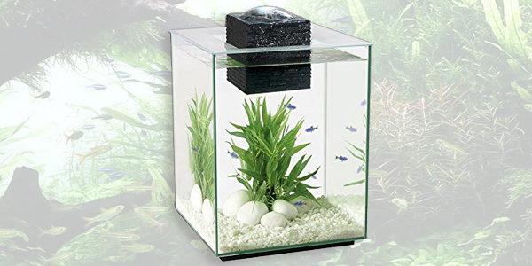 Fluval Chi II Aquarium Set 5 Gallon