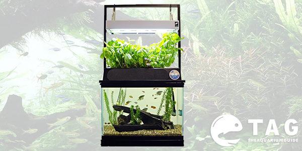 ECO-cycle Aquaponics Kit (Dual t5 Grow Light)