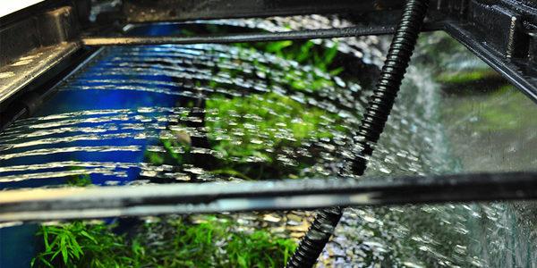 Aquarium Filter Flow Rate