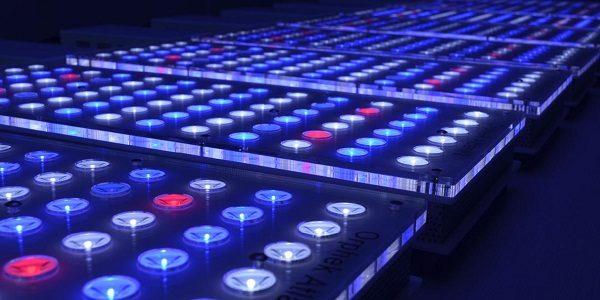 Aquarium Lighting 2